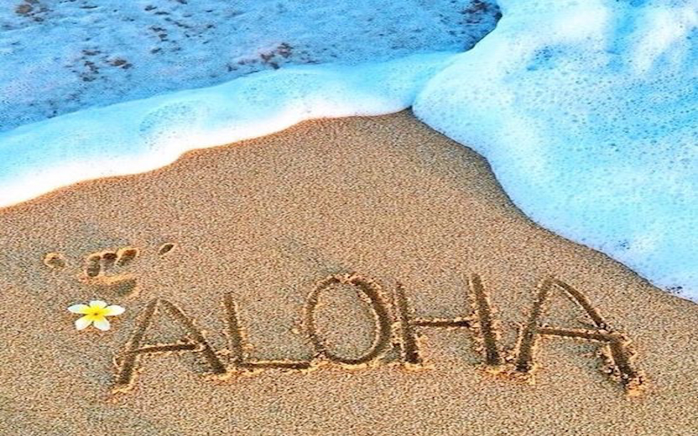 Aloha – Welcome To Our New Site!