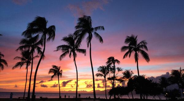 Romance, Maui Sunsets and Food